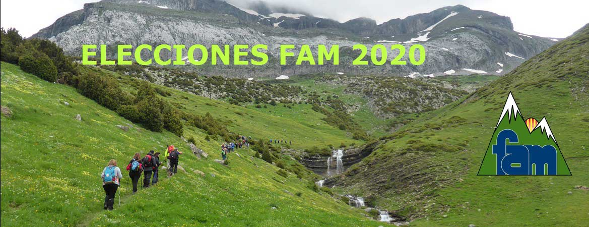 ELECCIONES FAM 2020